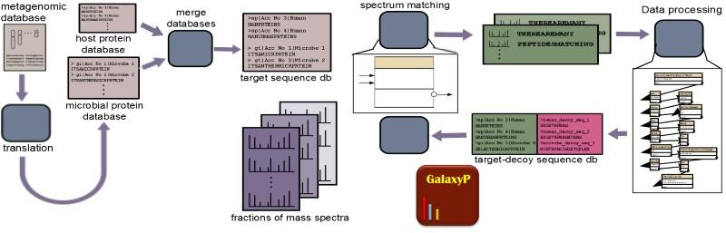 Metaproteomics workflow